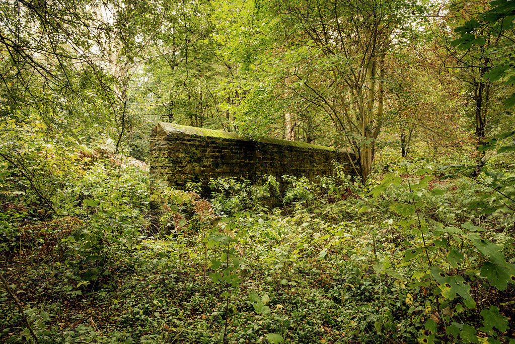 Searching for Trenches (wall section), Milton Heath